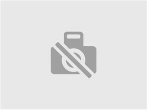Softeismaschine Carpigiani 501 PSP:   Elektromechanische Softeismaschine, 2 Grundsorten + 1 Mix, patentierte Carpi